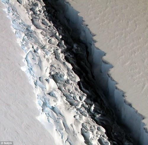 Larsen Ice Shelf C prima untuk kehilangan luas lebih dari 1.900 mil persegi (5.000 kilometer persegi), setelah keretakan di lapisan es tumbuh tiba-tiba sekitar 11 mil (18 km) di paruh kedua bulan Desember. Digambarkan adalah pandangan dari 300-ft keretakan lebar yang baru ditemukan di Larsen C