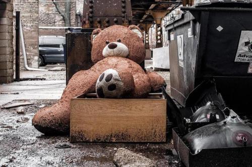 20 Januari (UPI) - A berukuran raksasa boneka beruang telah diselamatkan oleh pemiliknya setelah foto menyedihkan itu berbaring dibuang di sebelah tempat sampah Chicago pergi virus online.