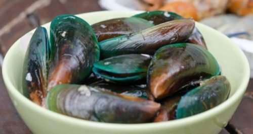 Baru-baru ini banyak masyarakat Cirebon yang mengalami keracunan setelah mengonsumsi kerang hijau dan tidak tanggung-tanggung merenggut korban jiwa. Disinyalir, kerang tersebut mengandung limbah kapal yang dibuang sembarangan di laut.